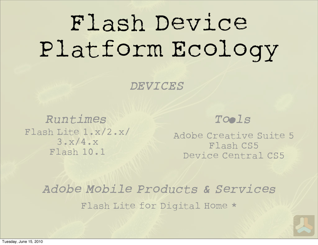 Flash Device Platform Ecology Flash Lite for Di...