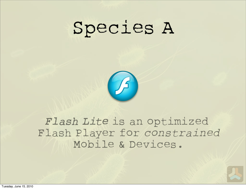Species A Flash Lite is an optimized Flash Play...