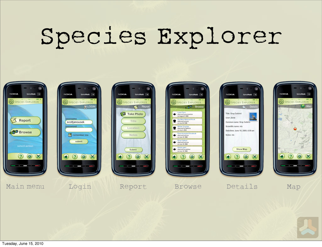 Species Explorer Main menu Login Report Browse ...
