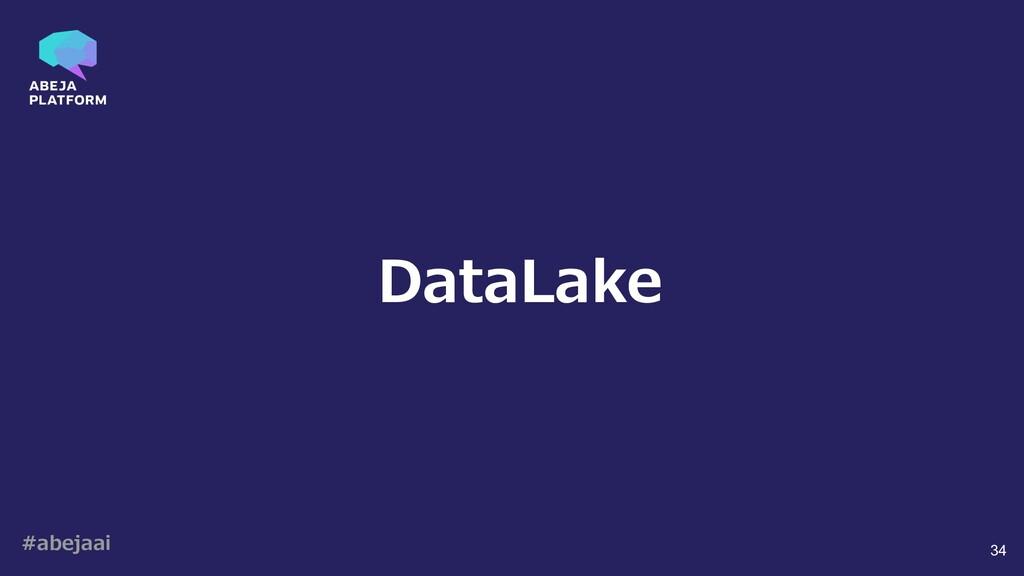 #abejaai 34 DataLake