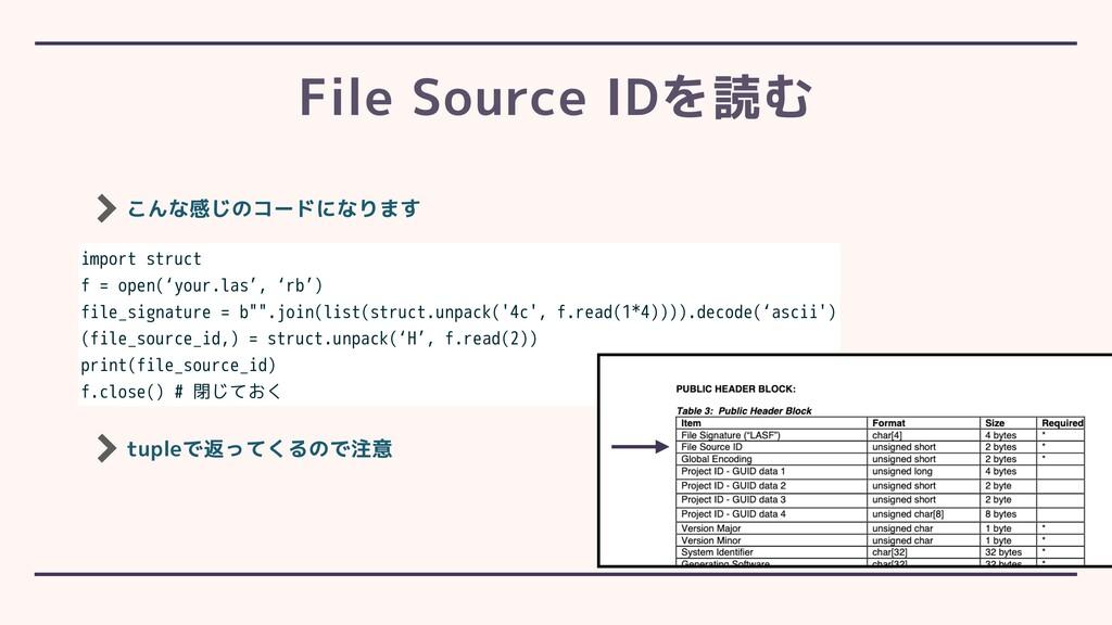 こんな感じのコードになります File Source IDを読む import struct ...