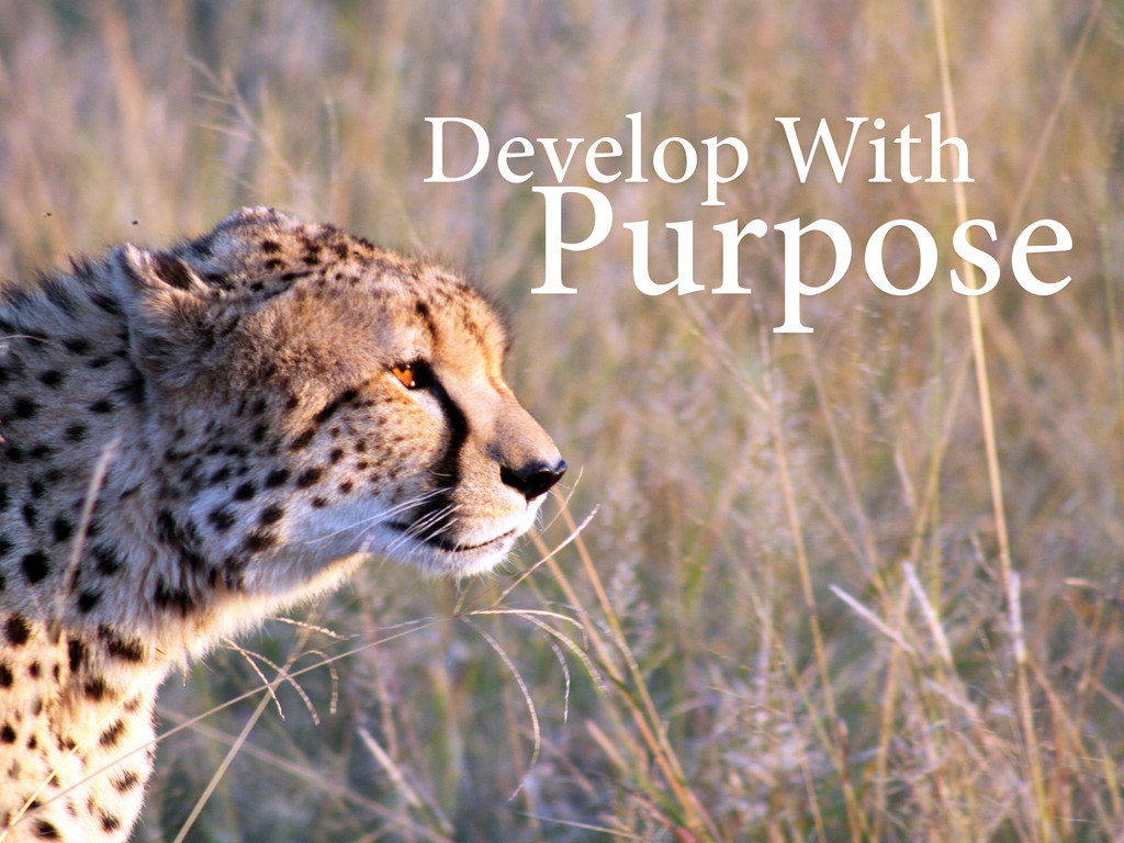 Develop With Purpose