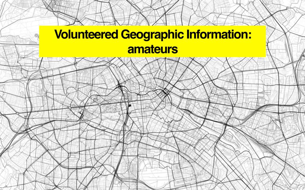 Volunteered Geographic Information: amateurs