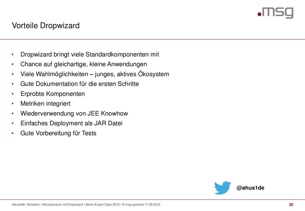 Vorteile Dropwizard Alexander Schwartz / Micros...