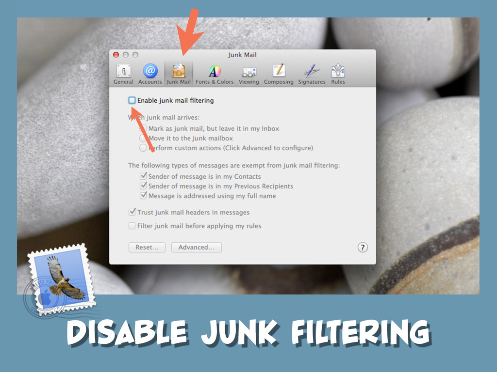 DISABLE JUNK FILTERING