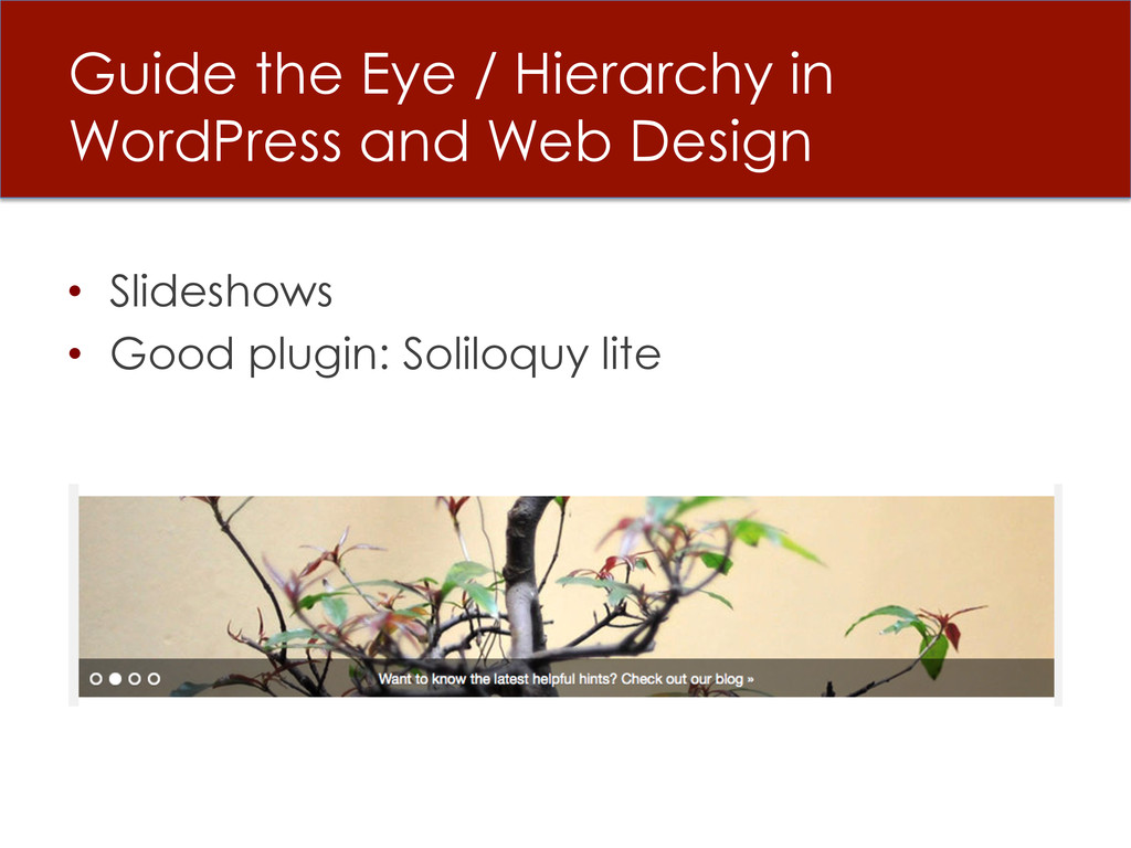 Guide the Eye / Hierarchy in WordPress and Web ...