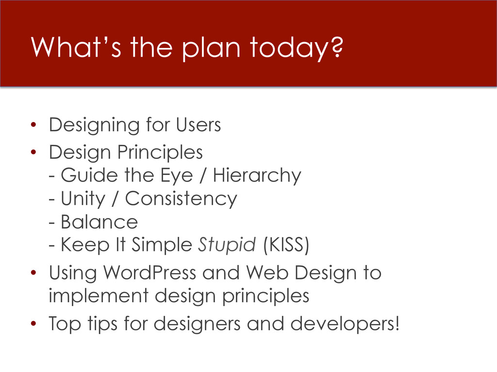 What's the plan today? • Designing for Users •...