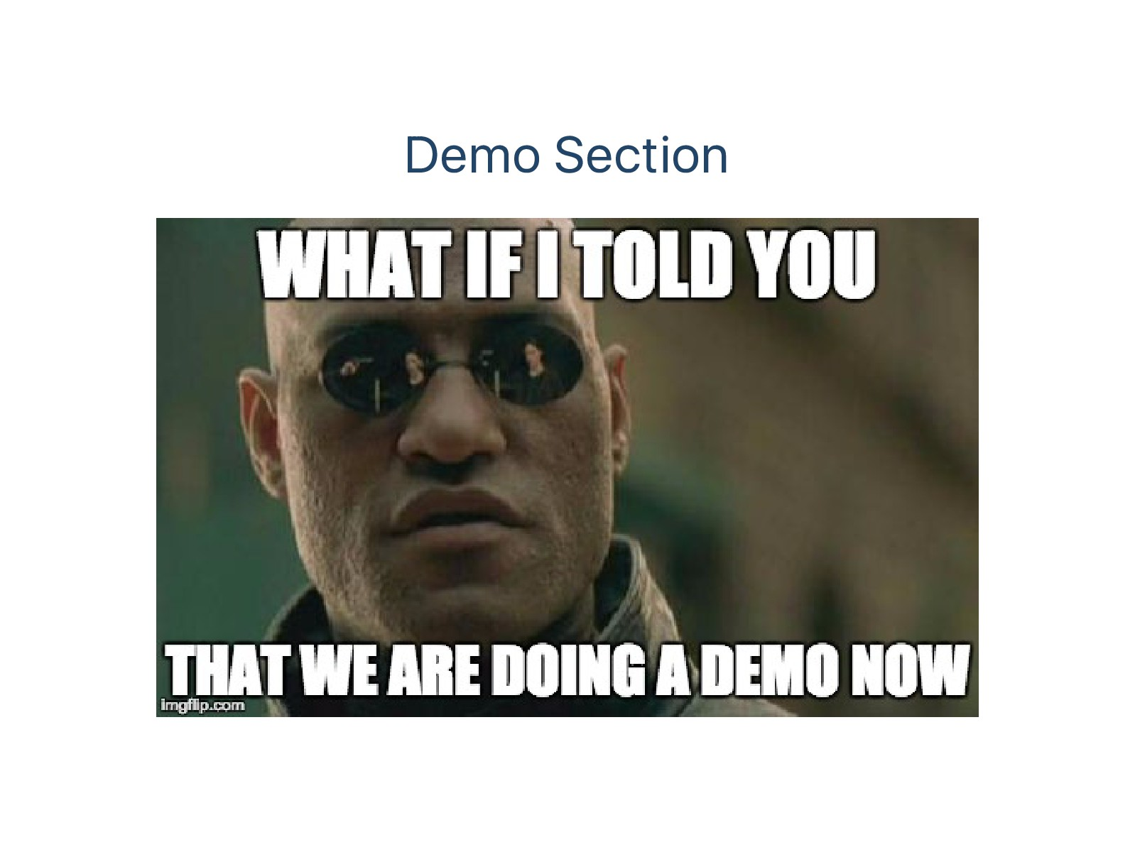 Demo Section