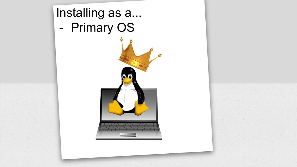 Installing as a... - Primary OS