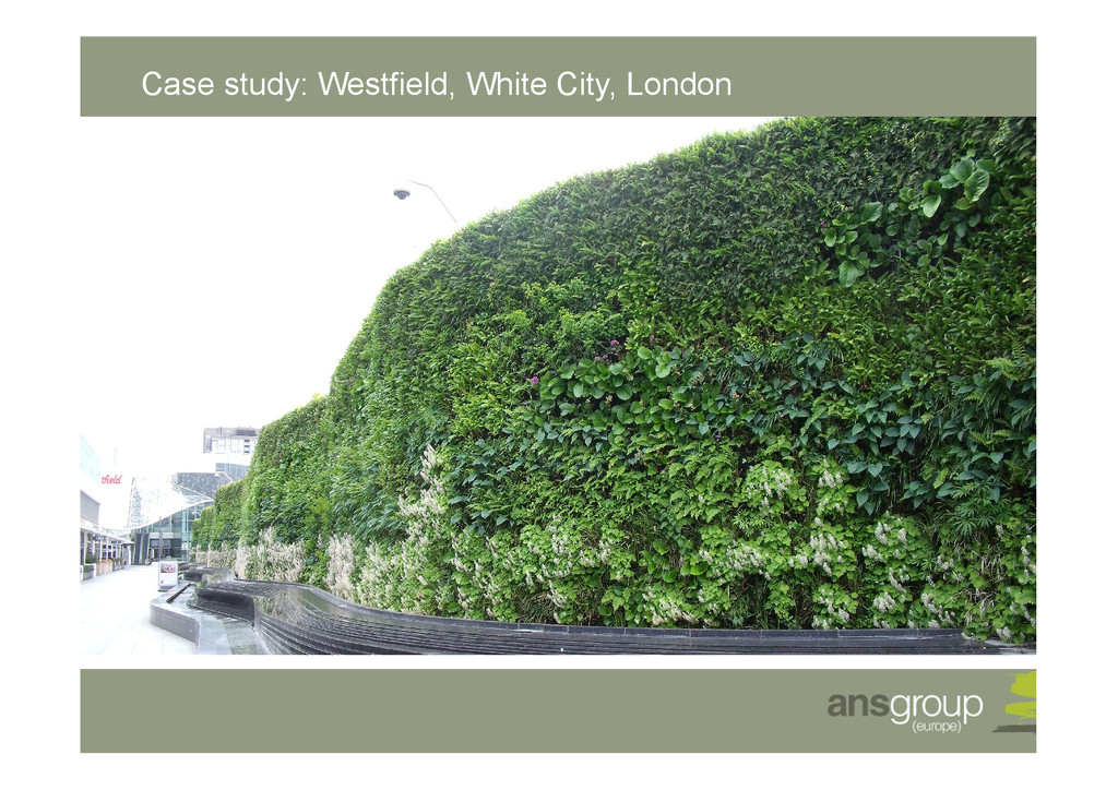 Case study: Westfield, White City, London