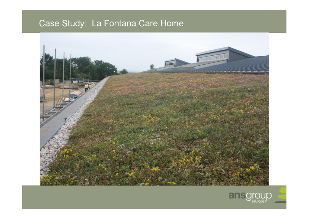Case Study: La Fontana Care Home