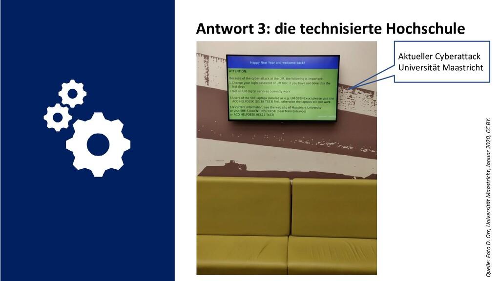 Quelle: Foto D. Orr, Universität Maastricht, Ja...