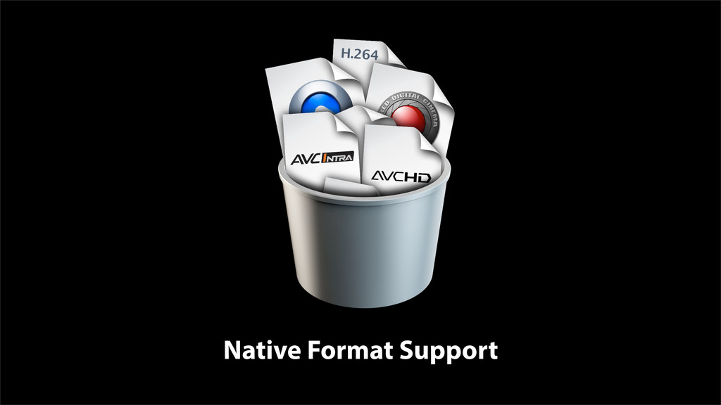Native Format Support