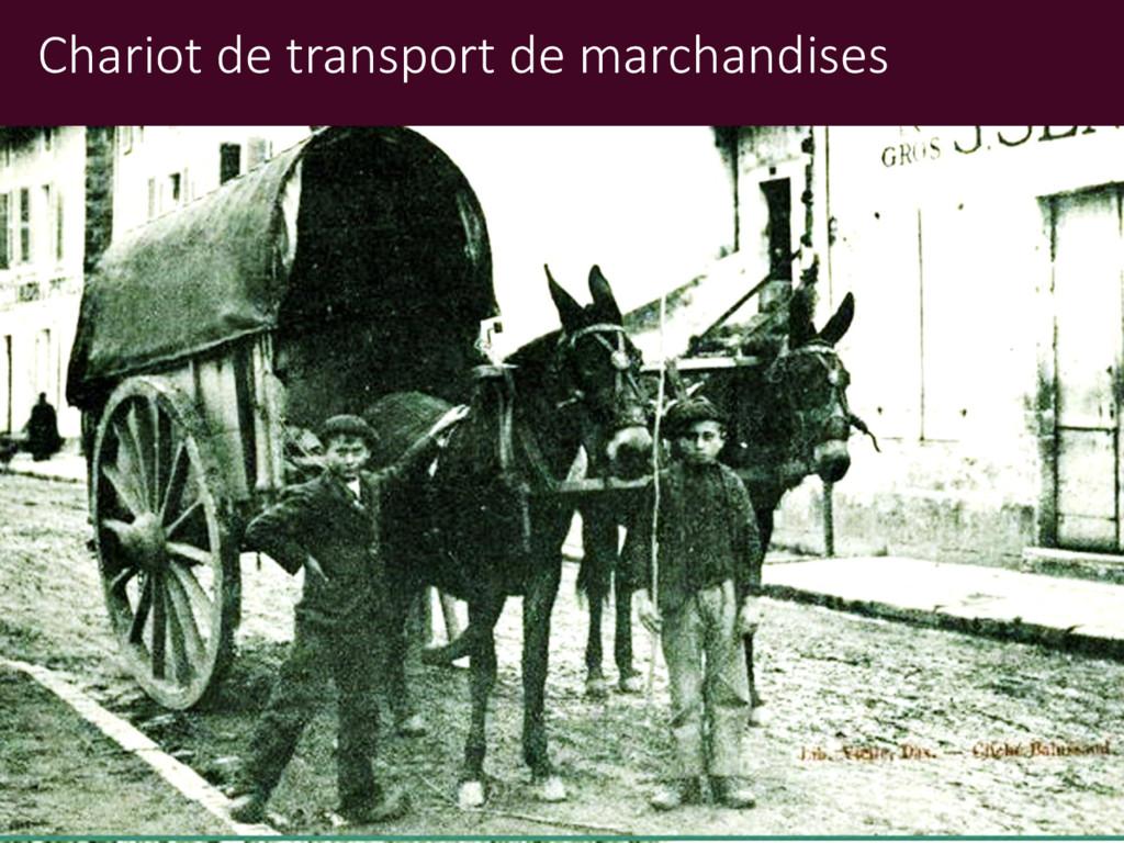 Chariot de transport de marchandises