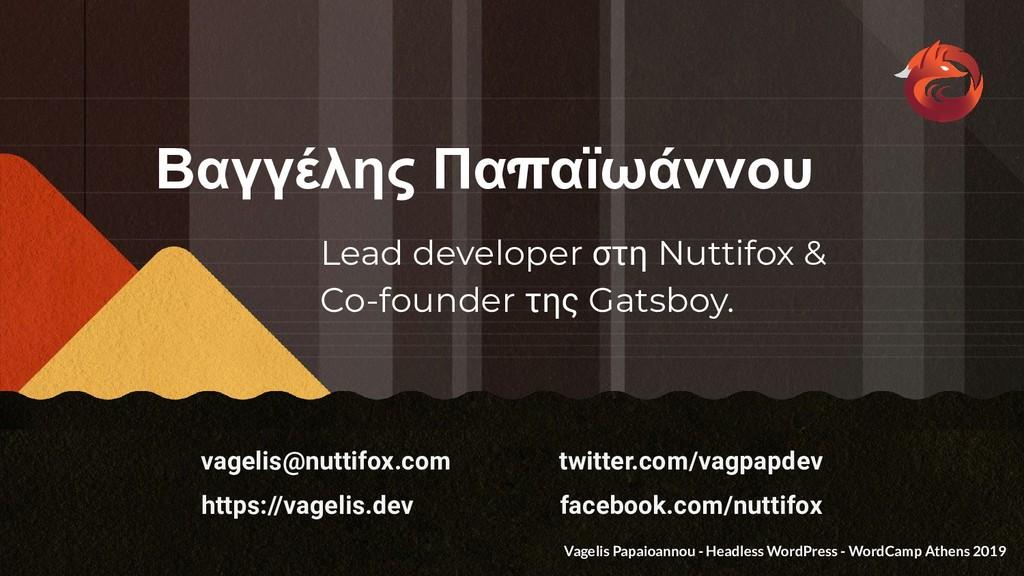 Lead developer στη Nuttifox & Co-founder της Ga...