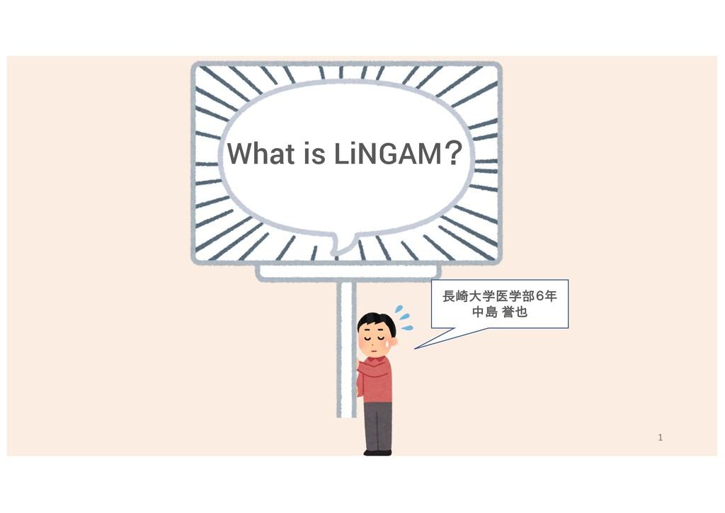 What is LiNGAM? 長崎大学医学部6年 中島 誉也 1