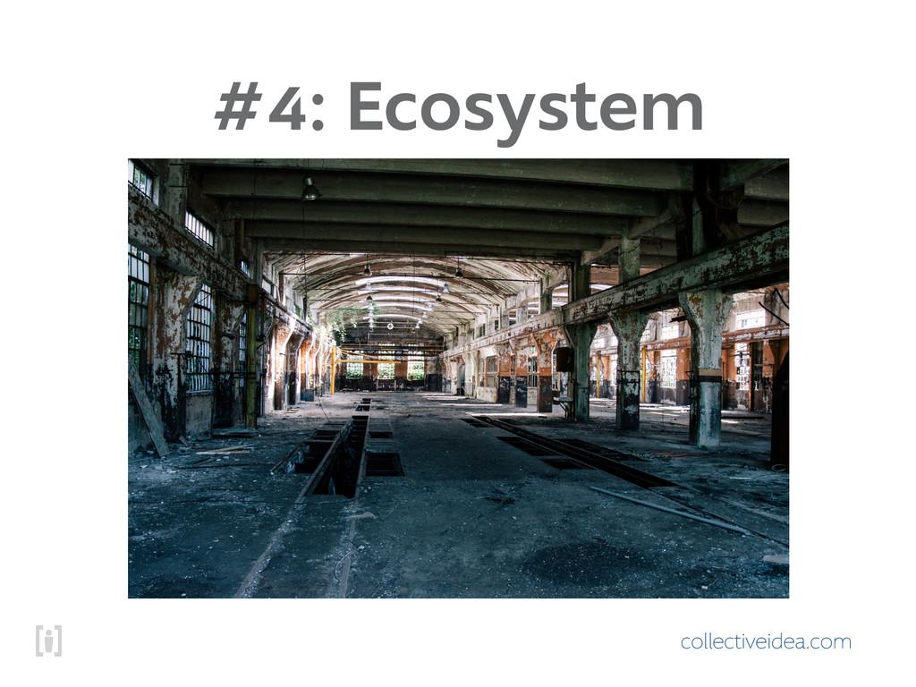 collectiveidea.com #4: Ecosystem