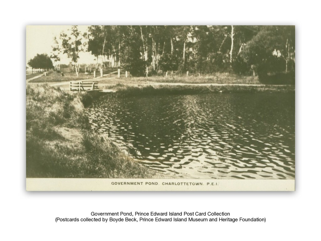 Government Pond, Prince Edward Island Post Card...