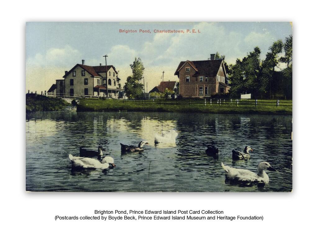 Brighton Pond, Prince Edward Island Post Card C...