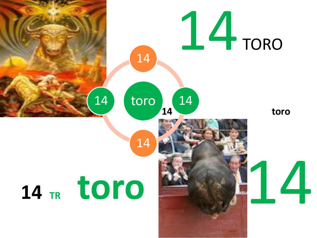 14 TORO 14 TR toro 14 toro 14 toro 14 14 14 14