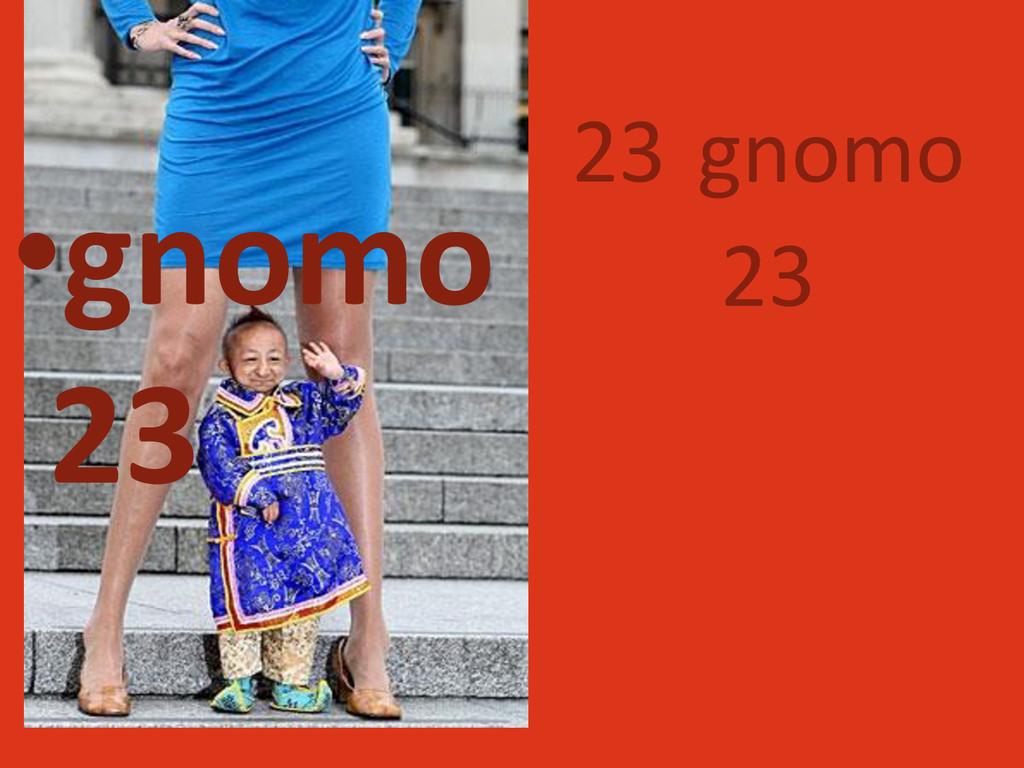 23 gnomo 23 •gnomo 23