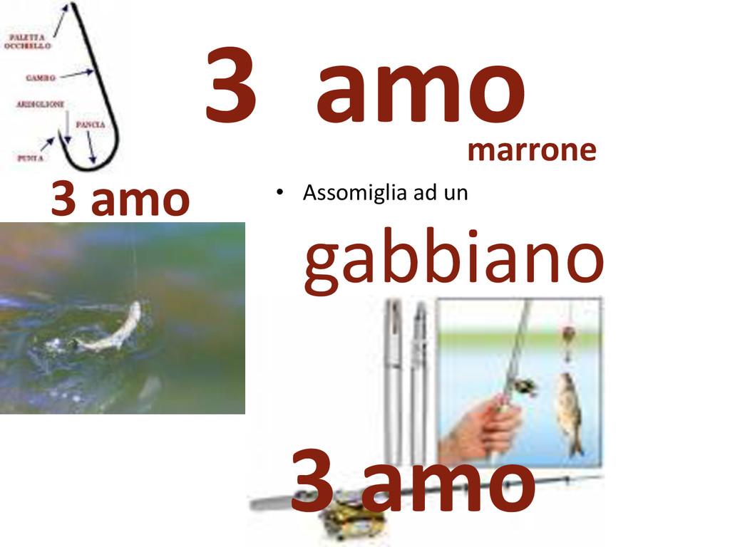 3 amo 3 amo marrone • Assomiglia ad un gabbiano...