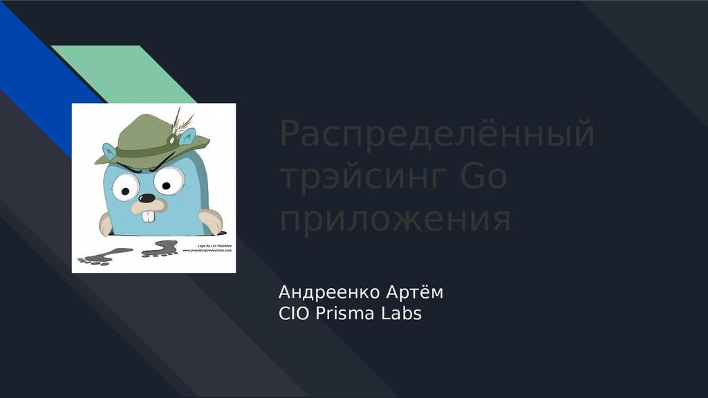 Распределённый трэйсинг Go приложения Андреенко...