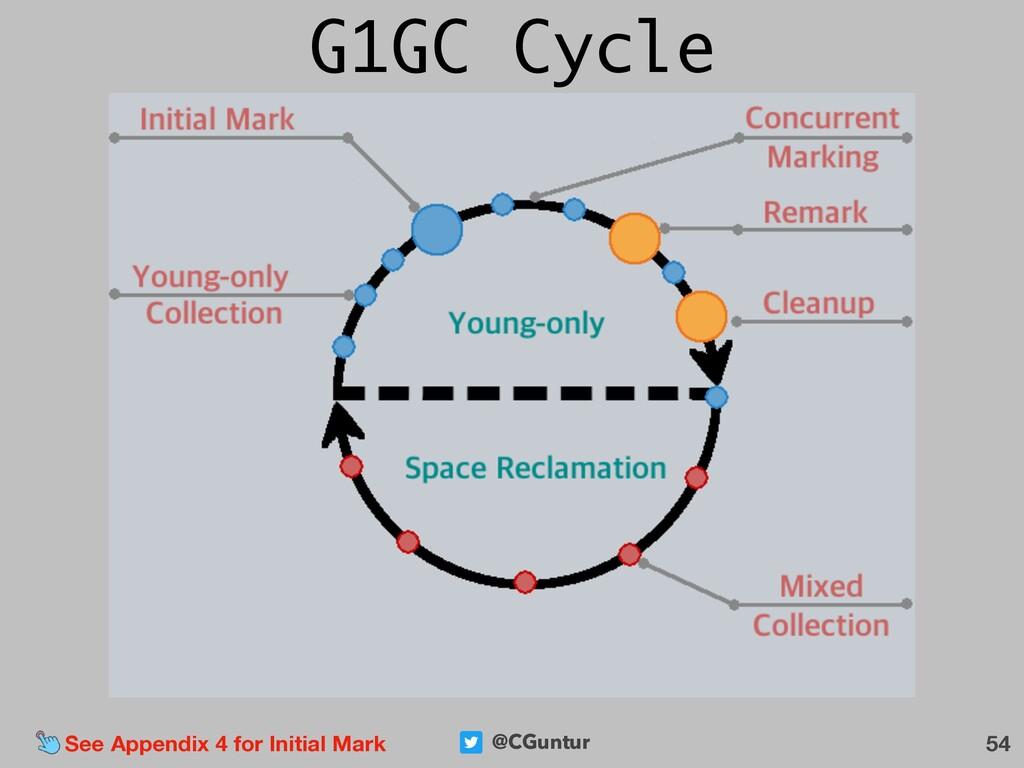 @CGuntur 54 See Appendix 4 for Initial Mark G1G...