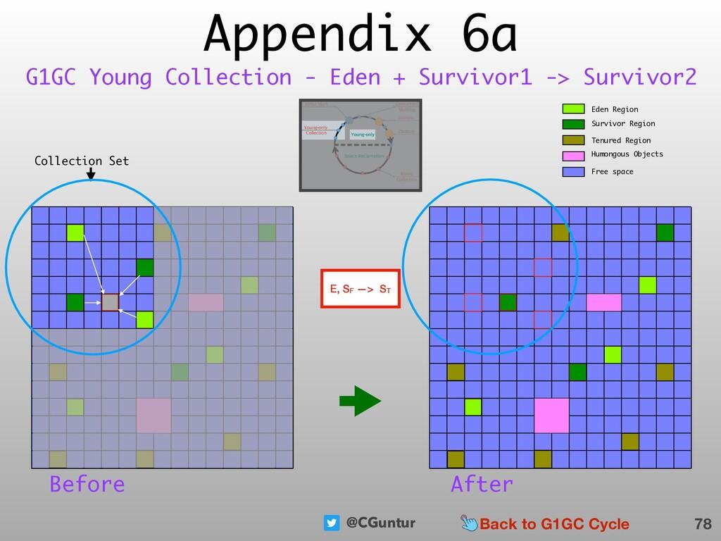 @CGuntur Appendix 6a 78 G1GC Young Collection -...