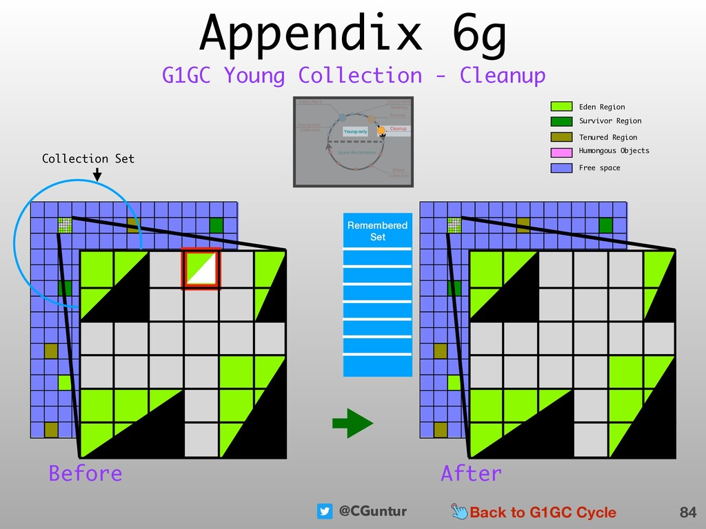 @CGuntur Appendix 6g 84 G1GC Young Collection -...