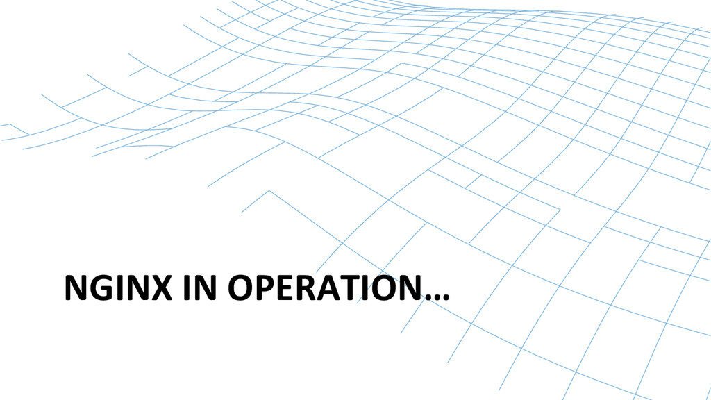 NGINX IN OPERATION…