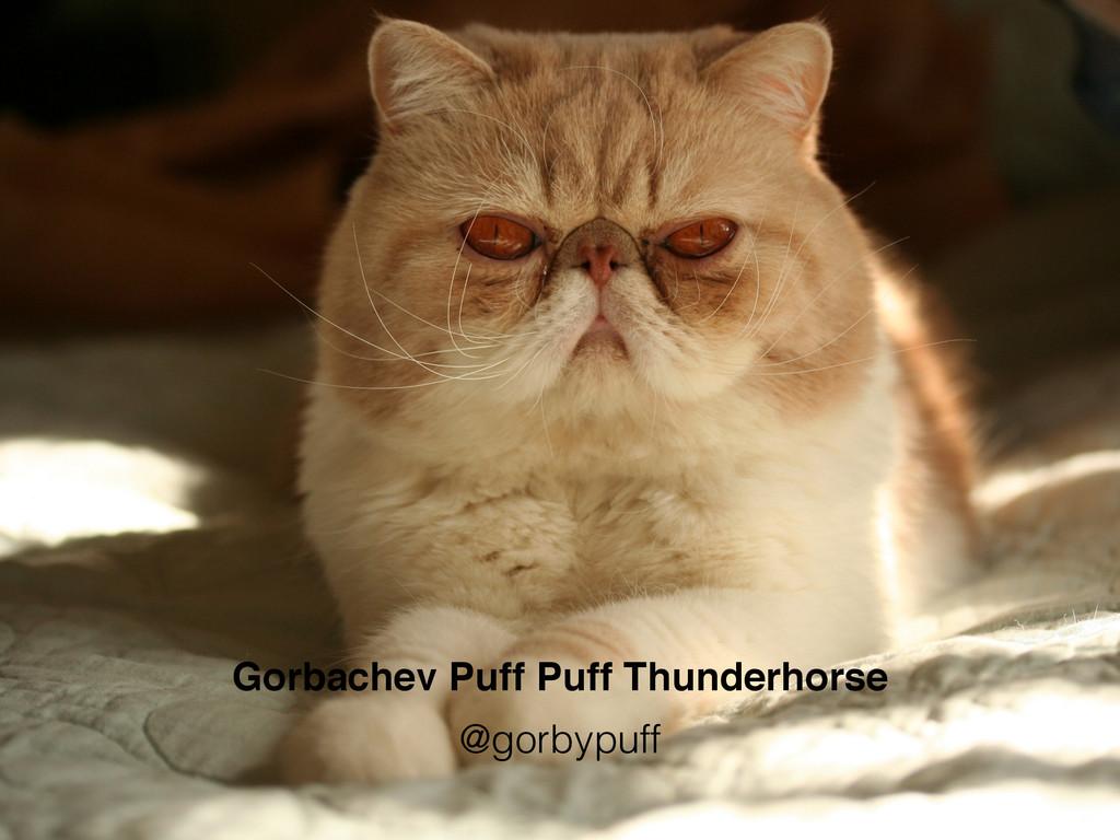 Gorbachev Puff Puff Thunderhorse @gorbypuff