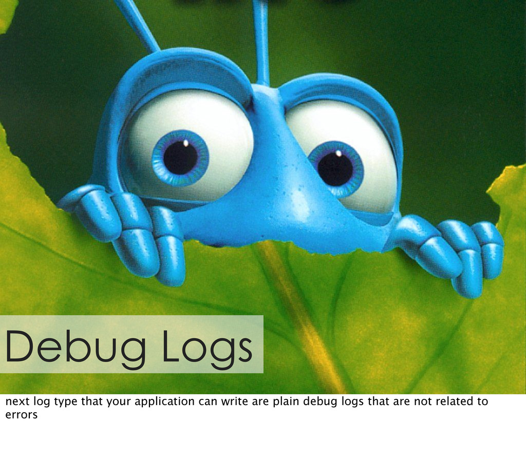 Debug Logs next log type that your application ...