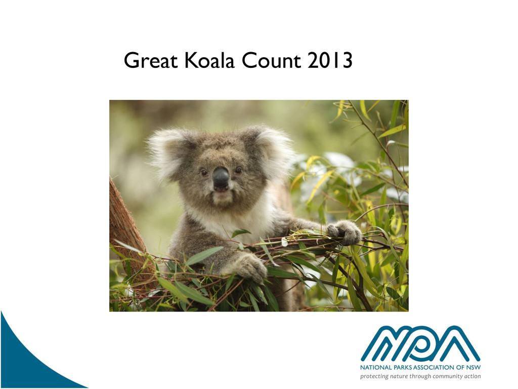 Great Koala Count 2013