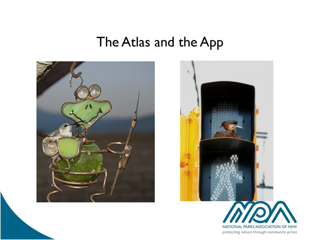 The Atlas and the App