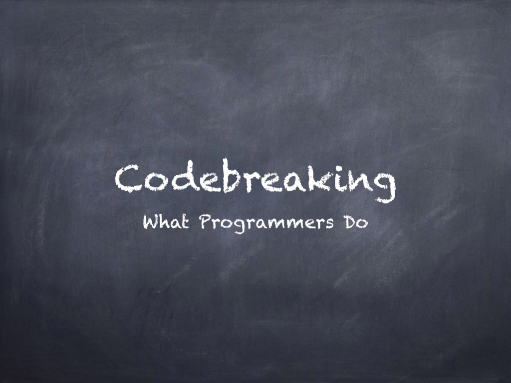 Codebreaking What Programmers Do