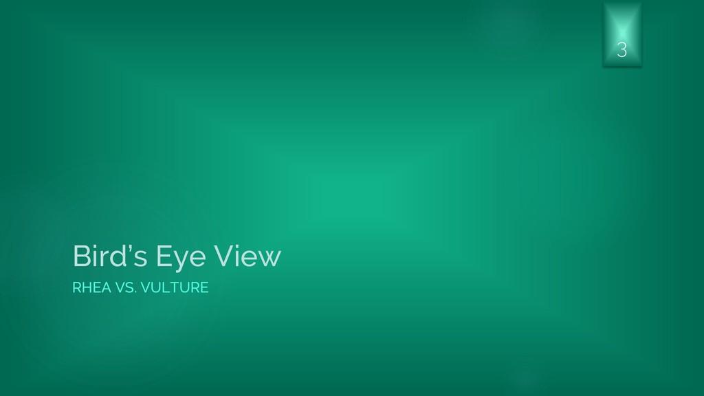 Bird's Eye View RHEA VS. VULTURE 3