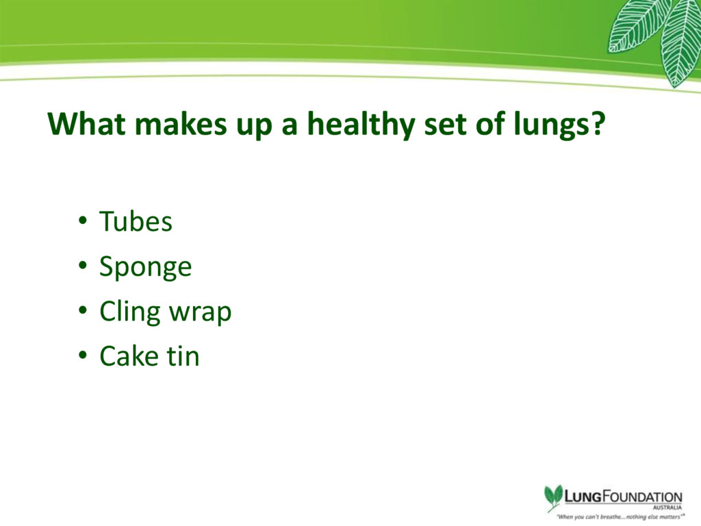 What makes up a healthy set of lungs? • Tubes •...