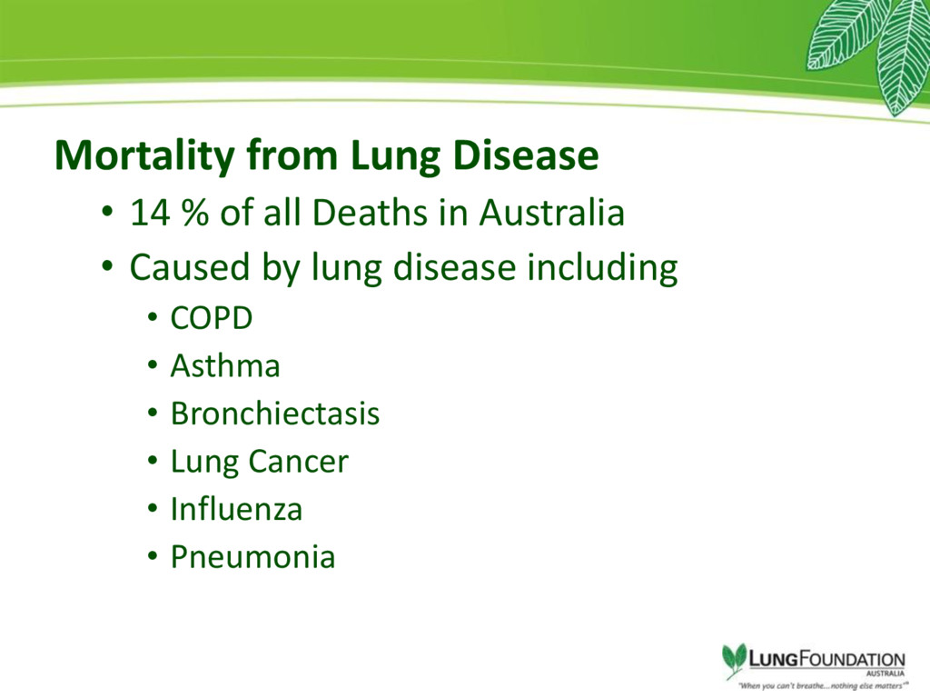 Mortality from Lung Disease • 14 % of all Death...