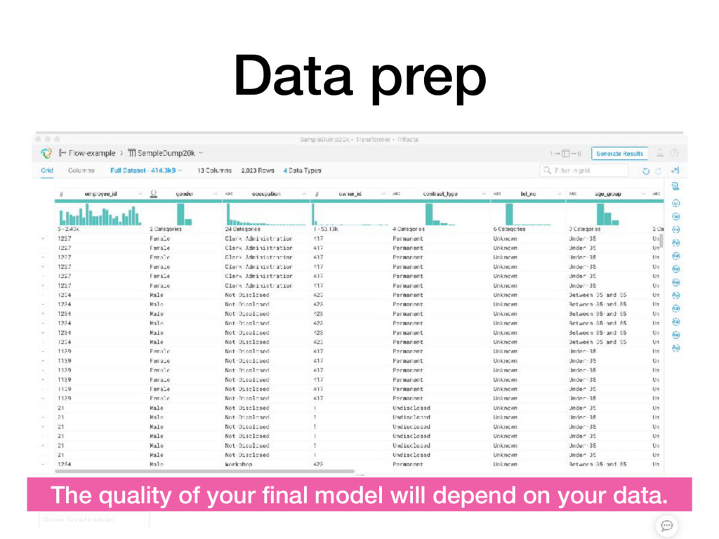 Data prep The quality of your final model will d...