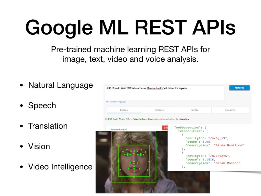 Google ML REST APIs • Natural Language  • Speec...