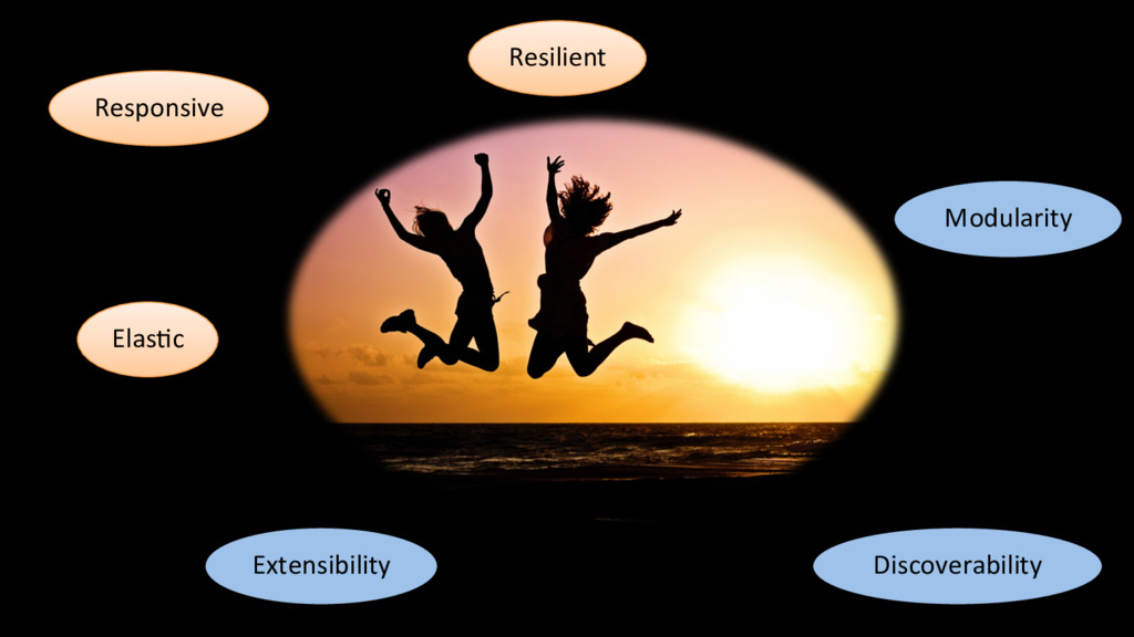 Discoverability Extensibility Resilient ElasOc ...