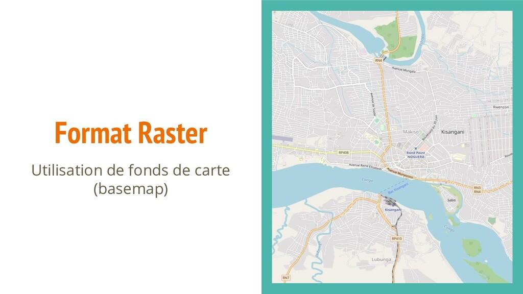 Format Raster Utilisation de fonds de carte (ba...