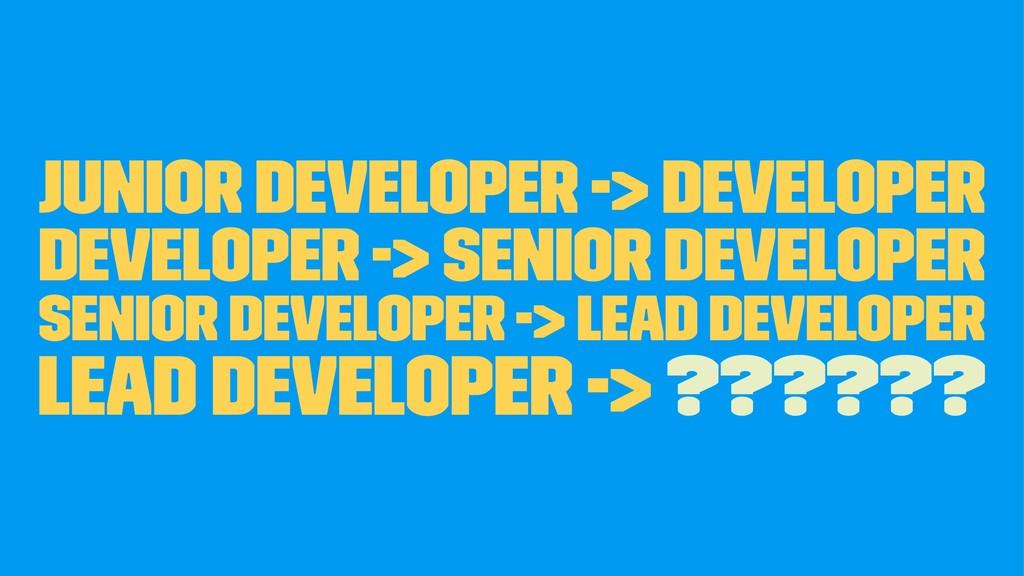 Junior Developer -> Developer Developer -> Seni...
