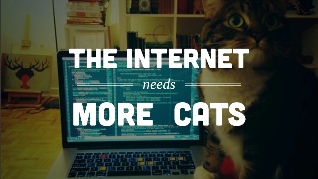 MORE CATS THE INTERNET needs