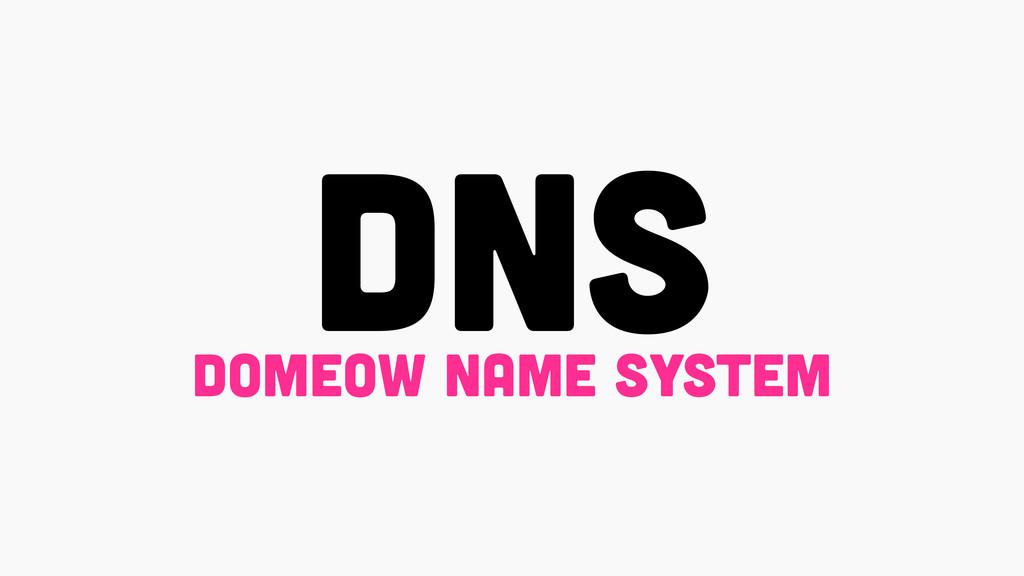 DNS domeow name system