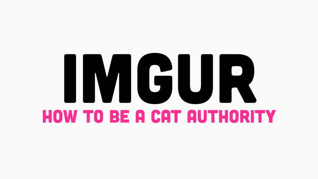 imgur how to be a cat authority