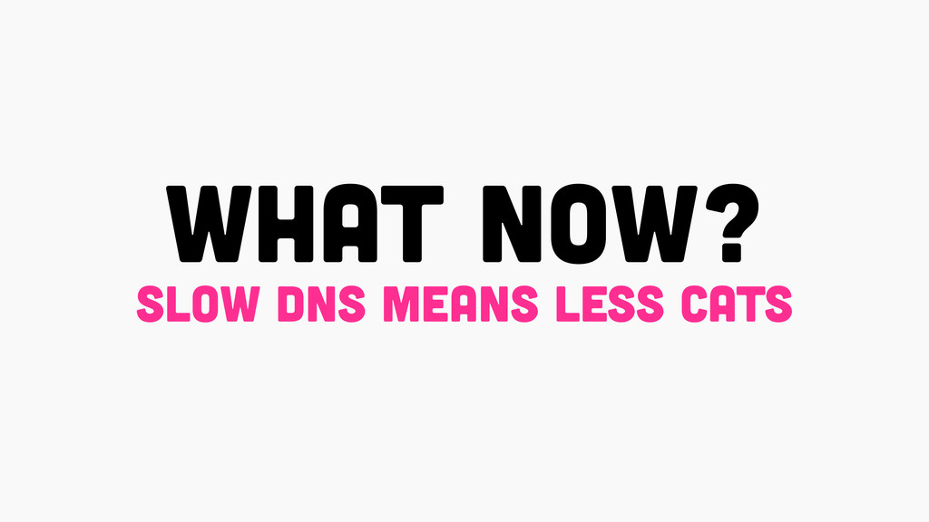 what now? slow dns means less cats