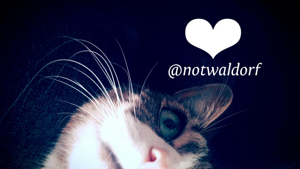 @notwaldorf ❤