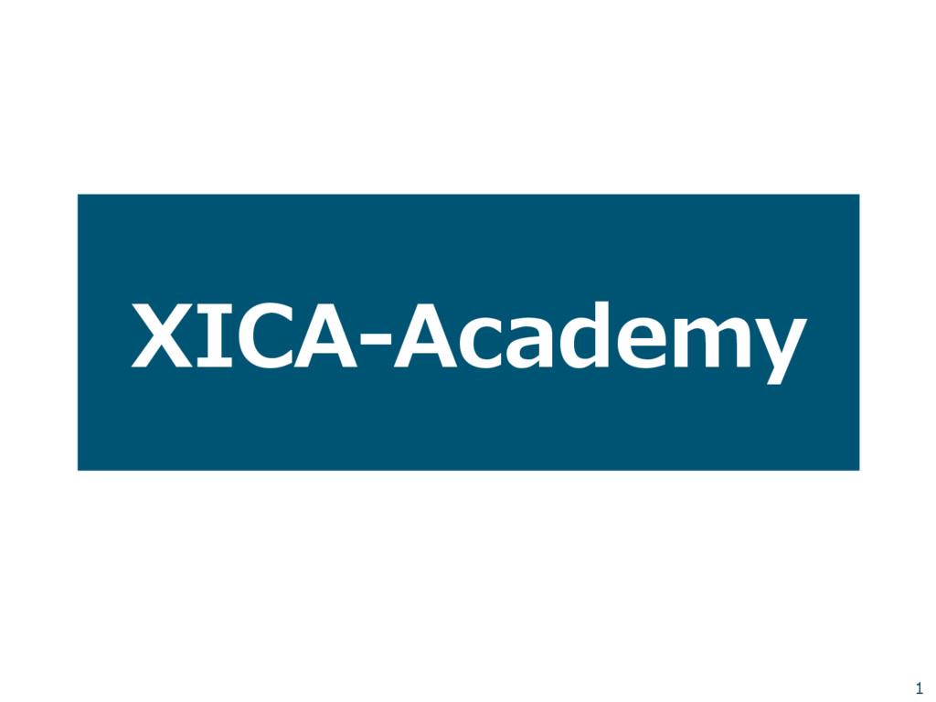 XICA-‐‑‒Academy 1